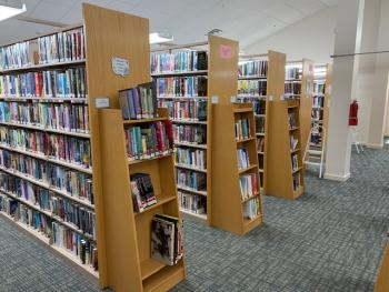 Library Non Fiction Stacks